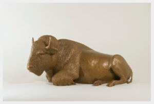 Realistic bronze sculpture of buffalo reclining 8 inches high