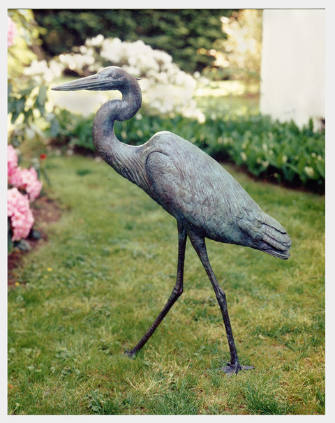 Realistic bronze sculpture life-size of a Great Blue Heron walking, head turned slightly left