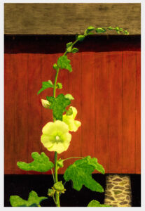 Realistic close-up landscape oil painting of a yellow blossoming hollyhock, with a red barn built in the 1800's as the background