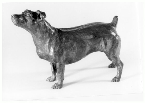 Realistic bronze sculpture of a short-legged Jack Russell Terrier standing and looking up, alert