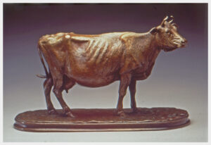Realistic bronze sculpture of an elderly cow, standing with a full udder head slightly to the right, tail flicking to the left.