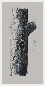 Realistic woodcut of a piece of oak, incorporating the board's existing knot.