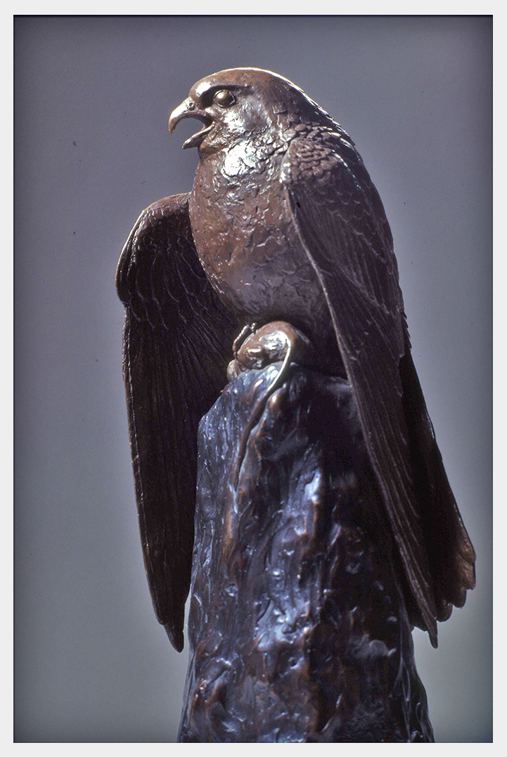 Realistic bronze sculpture table-size of a kestrel, beak open while his head is turned to the left wings shouldered forward sheltering his prey a mouse in his talons settled on an outcrop.